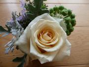 Flowerarranging_193