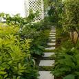 Garden_088