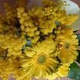 Flowerarranging_016