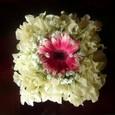 Flowerarranging_155